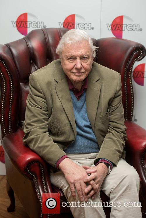 David Attenborough 4
