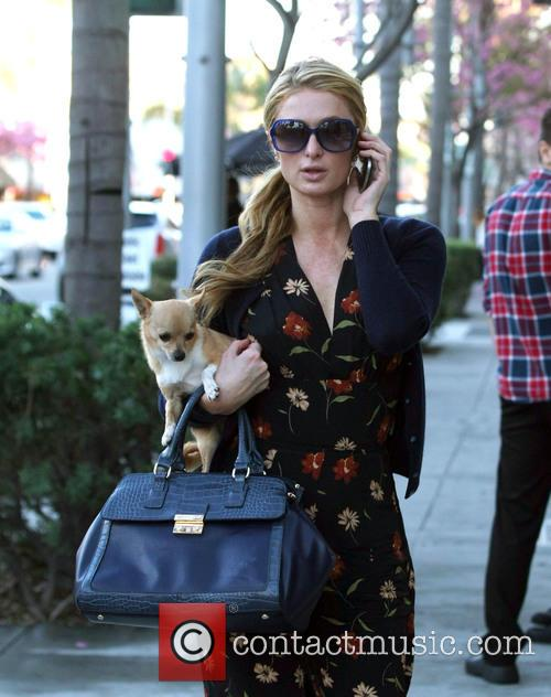 Paris Hilton running errands Los Angeles for with...