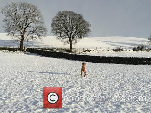 Snowfall and Cumbria 7