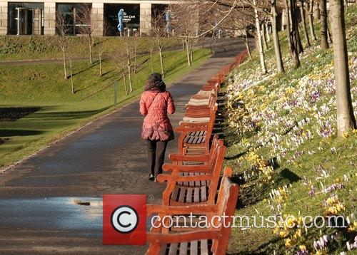 Spring flowers are starting to bloom in Edinburgh