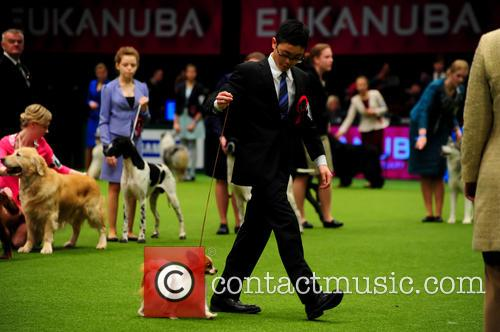 Crufts International Junior Handling competition at the National...