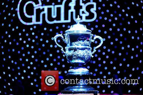 Winners Cup 1