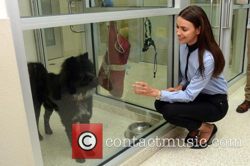 Irina Shayk Visits ASPCA's Adoption Center