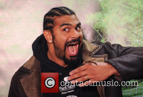 David Haye and I'm A Celebrity...get Me Out Of Here!