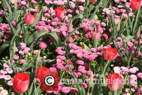 Kew Gardens 4