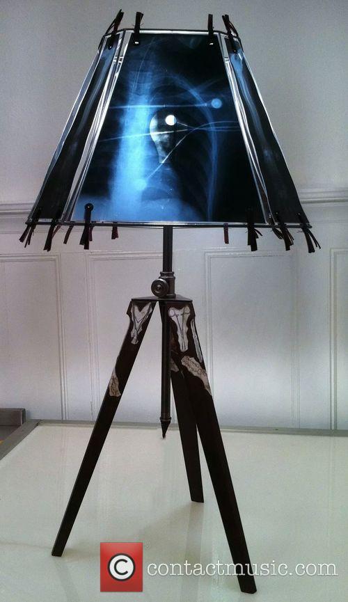 Animal X-ray Lampshades 8