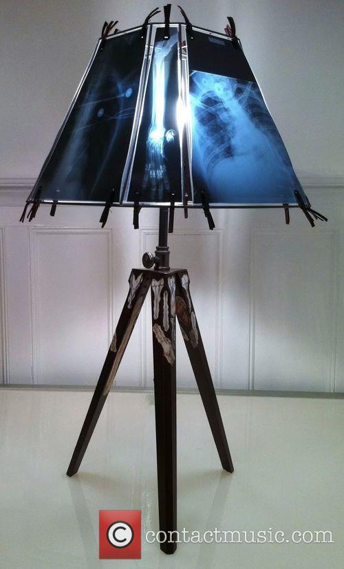 Animal X-ray Lampshades 9