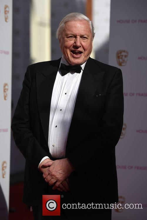 Sir David Attenborough 2