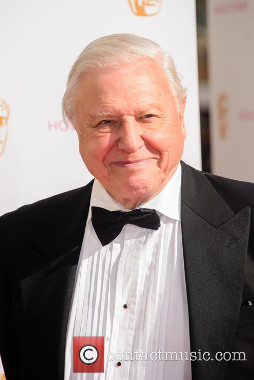 Sir David Attenborough Slams Bear Grylls For Killing Animals