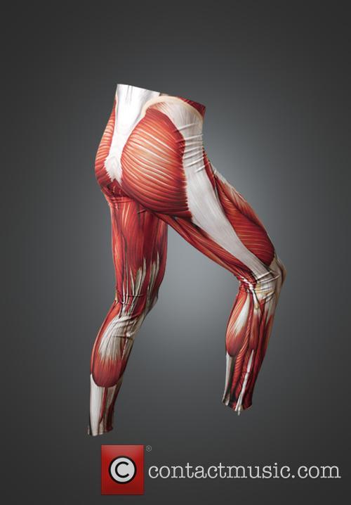 Anatomy Body Suit