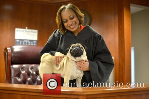 Adorable Blind Pug and Judge Are Inseparable Best...