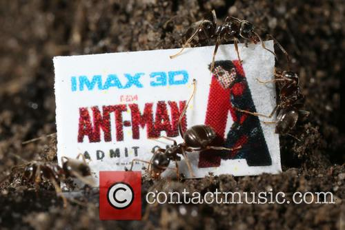 Ant-sized Ticket, Super-sized Imax Experience, Tiny Imax Tickets Hidden and In Uk Cities 3