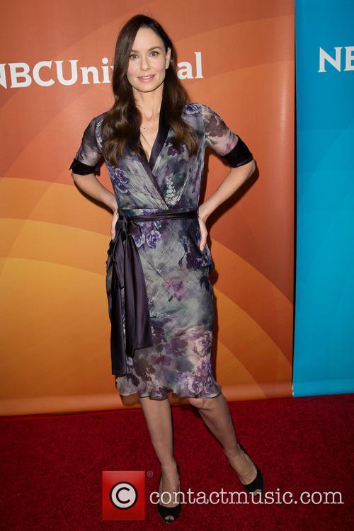 Sarah Wayne Callies 3