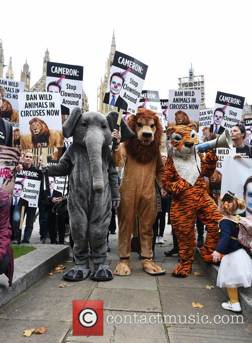 Protest to ban the use of wild animals...