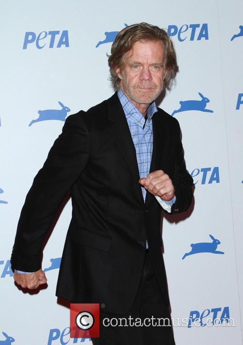 William H. Macy 4