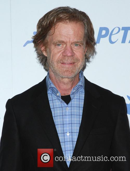 William H. Macy 7