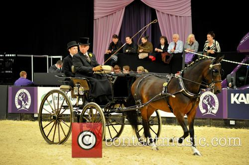 Contestant and Harness Horse & Pony Of The Year 3