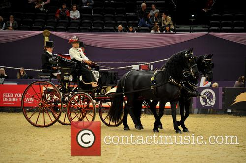 Contestant and Harness Horse & Pony Of The Year 6