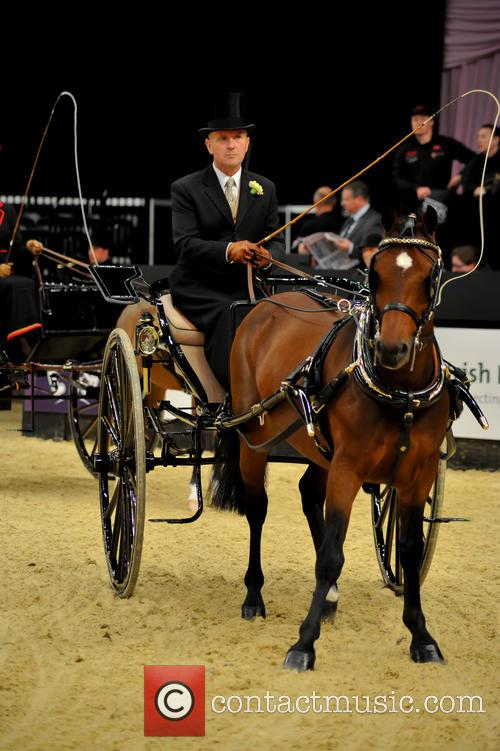Contestant and Harness Horse & Pony Of The Year 7
