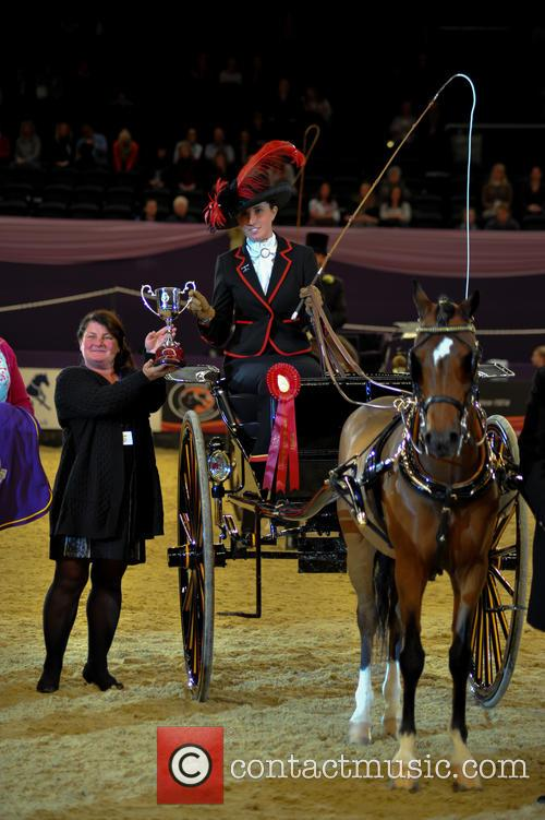 Aghaderg Stand, Deliver (winner) and Harness Horse & Pony Of The Year 5
