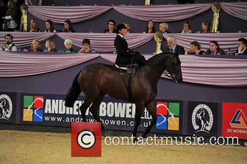 Tudor Minstral, Ms Jenna Tyldesley and Great Scott! Ladies Side Saddle Of The Year 2