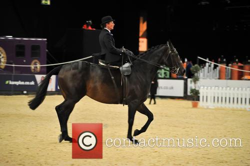 Tudor Minstral, Ms Jenna Tyldesley and Great Scott! Ladies Side Saddle Of The Year 4