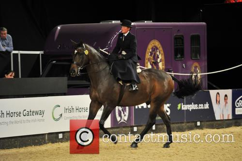 Tudor Minstral, Ms Jenna Tyldesley and Great Scott! Ladies Side Saddle Of The Year 1