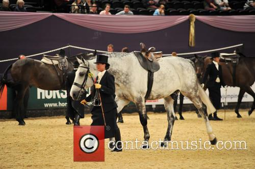 Loch Royal Ii, Michelle Underwood and Great Scott! Ladies Side Saddle Of The Year 1