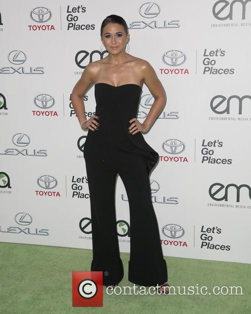 Emmanuelle Chriqui 4