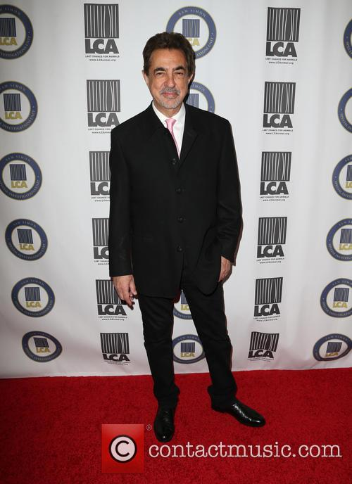 Joe Mantegna 8
