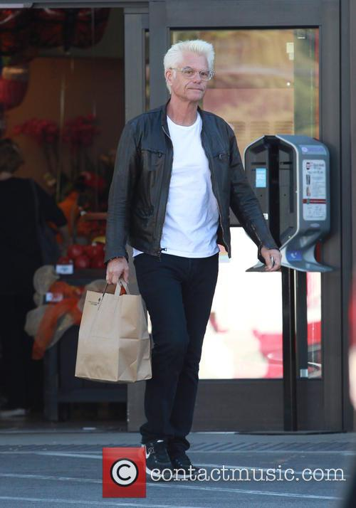 Harry Hamlin 6
