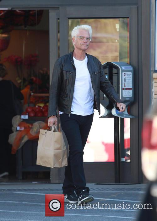 Harry Hamlin 7