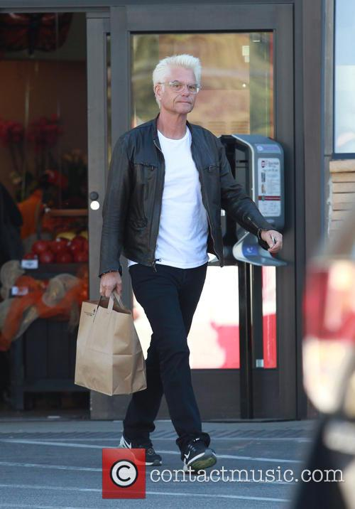 Harry Hamlin 8