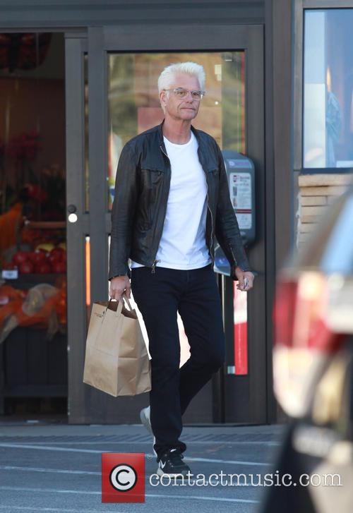Harry Hamlin 10