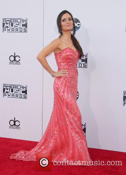 American Music Awards 2015 (AMA's) - Arrivals