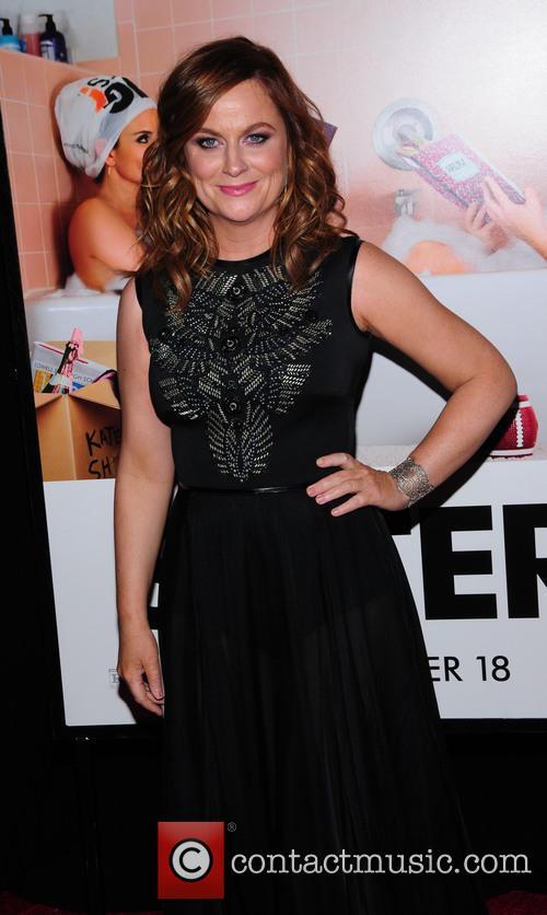 Amy Pohler 5