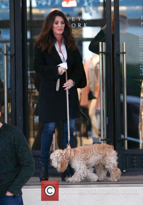 Lisa Vanderpump 6