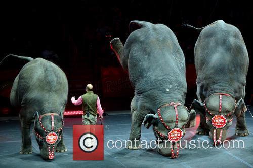 Ringling Bros. and Barnum & Bailey present Circus...