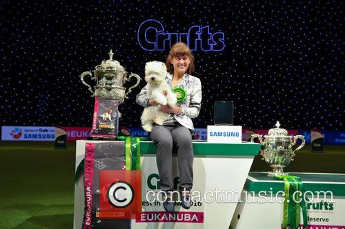 Marie Burns, Devon and Ch Burneze Geordie Girl 1