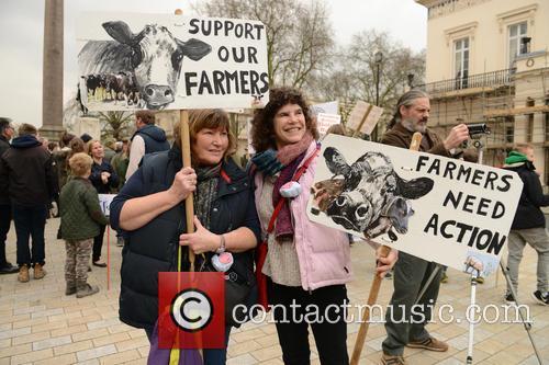 Farmers 3