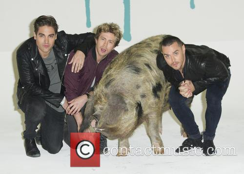 Charlie Simpson, Matt Willis, James Bourne and Sandy The Pig 3