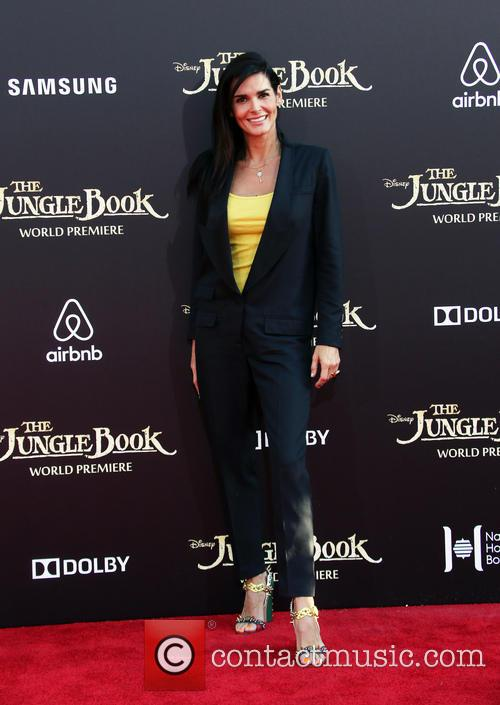 Angie Harmon 3