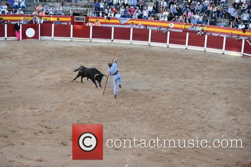 Josè Barceló Campanilla 5