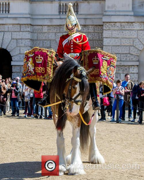 Guards and A Drum Horse 9