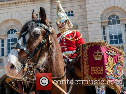 Guards and A Drum Horse 11