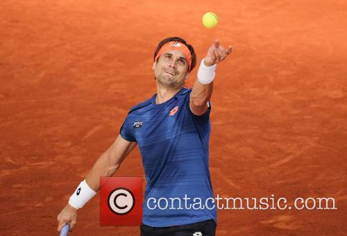 David Ferrer 3