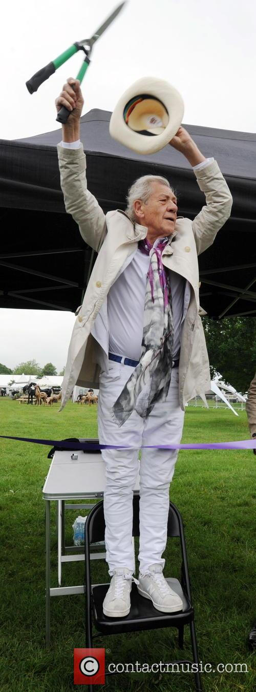 Sir Ian Mckellan 2