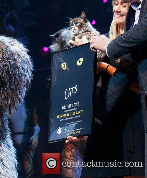 Grumpy Cats Visits Cats the Musical