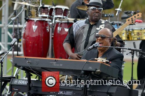 Stevie Wonder 9