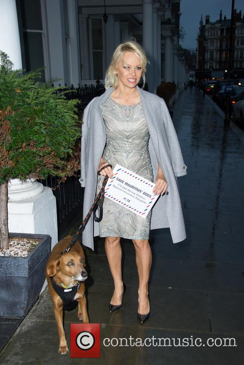Pamela Anderson takes petition to the High Commission...